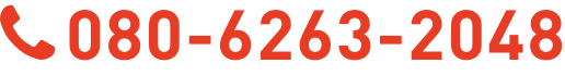 080-6263-2048